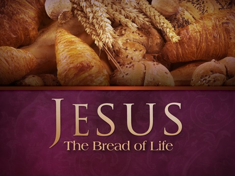 Image result for the bread of life images